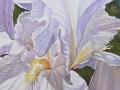 susan-painting-7.jpg